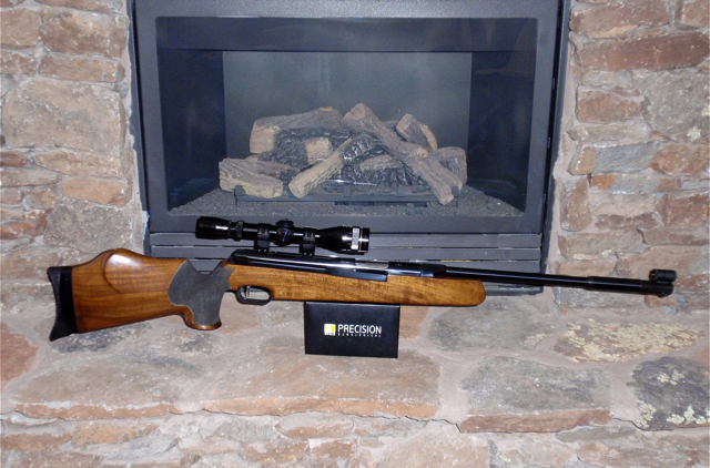 FWB 300S fireplace shot