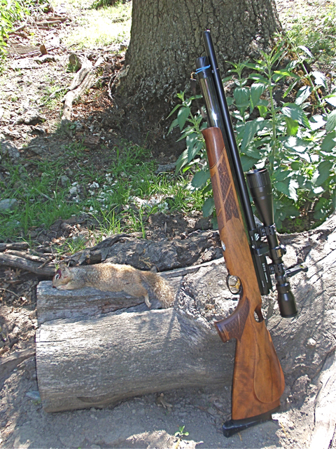 AA 510 Carbine