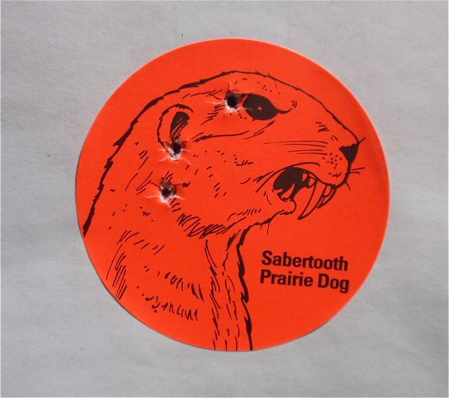 Sabertooth prairie dog