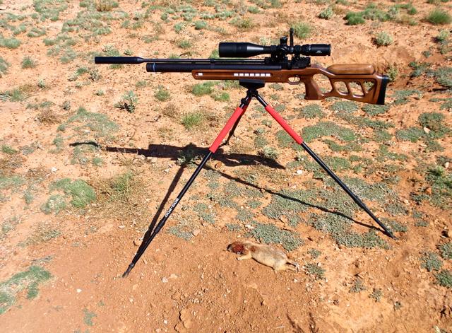 Rifle on tripod