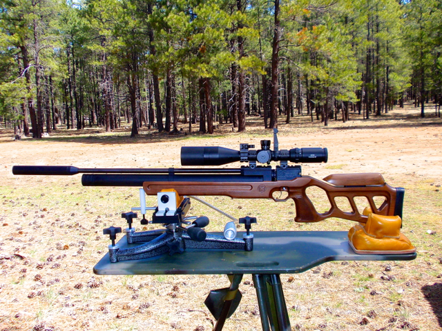 Cricket  25 rifle on stand
