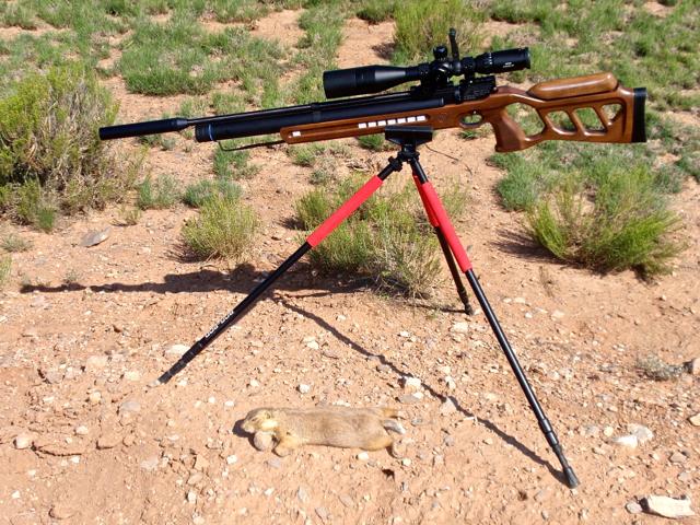 Rifle, tripod, p-dog