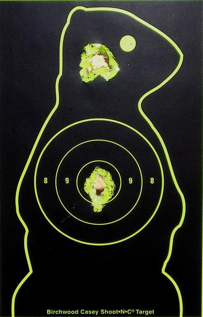 AA 410 rifle target